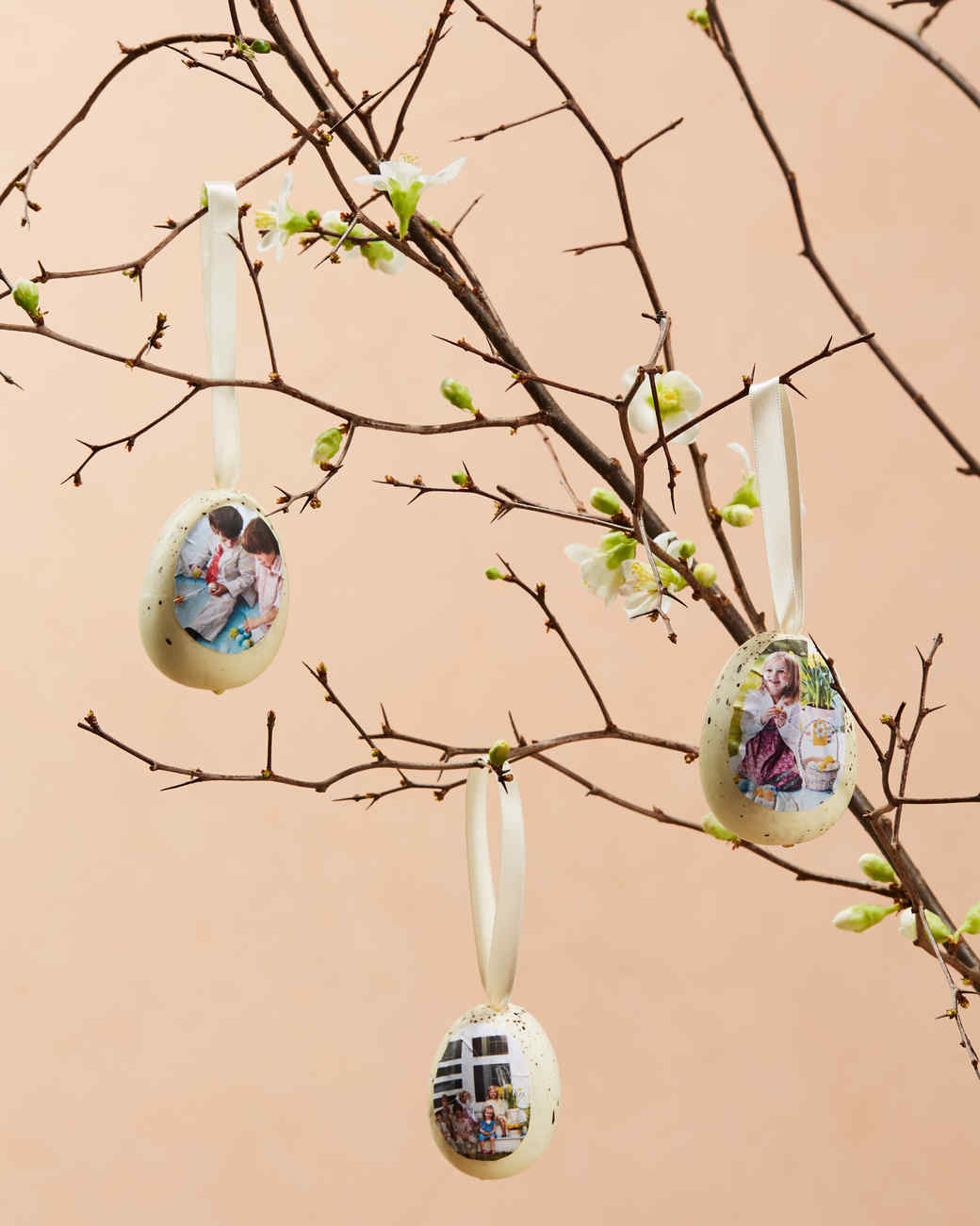 three family easter egg ornaments hanging from budding branches