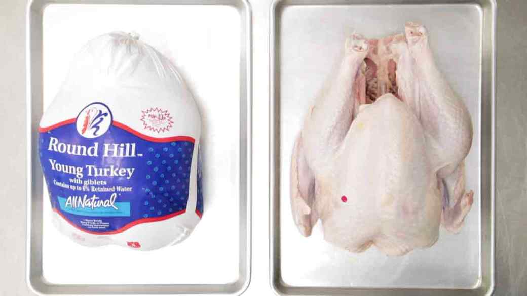 how_to_thaw_your_turkey_fast.jpg