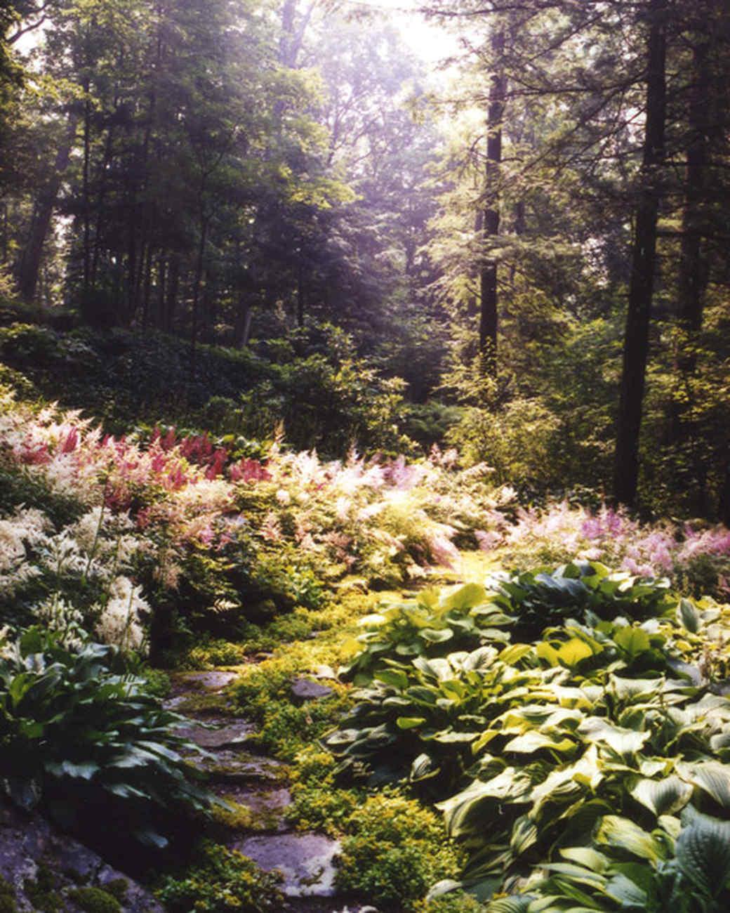 la103363_0708_woodlandgargen.jpg