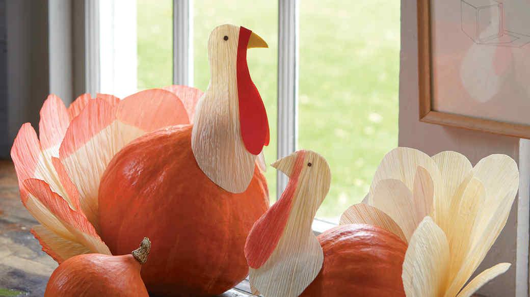 mld105445_1110_turkeys1_exp2.jpg