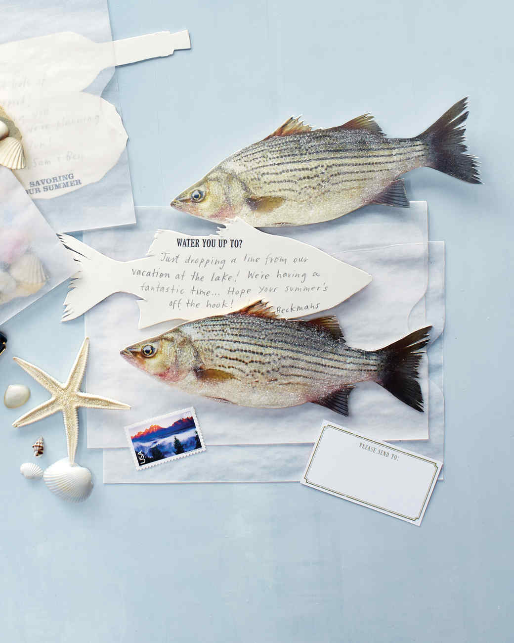 postcards-fish-0811mld107467.jpg