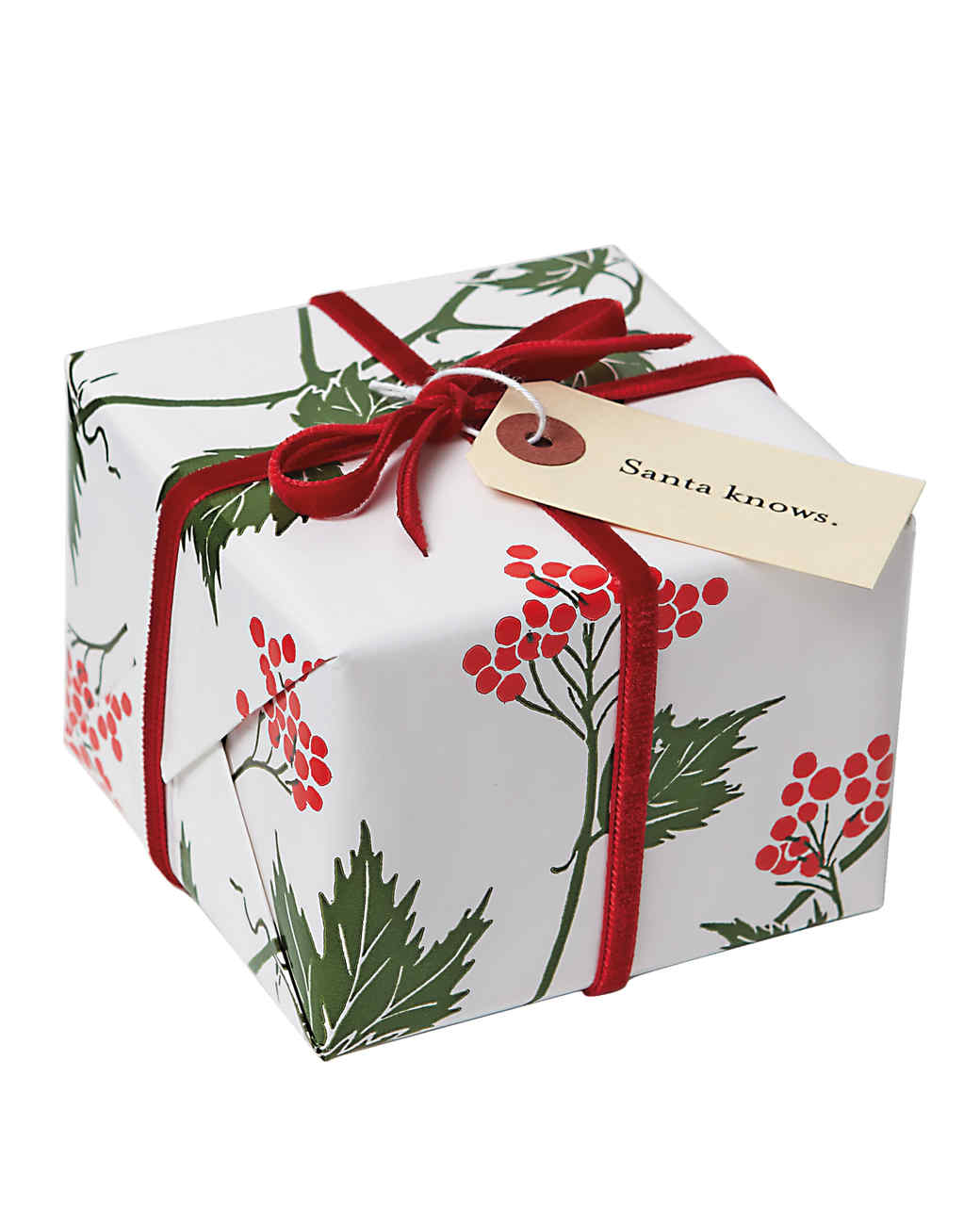 wrapped-gift-070-r-mld110571.jpg