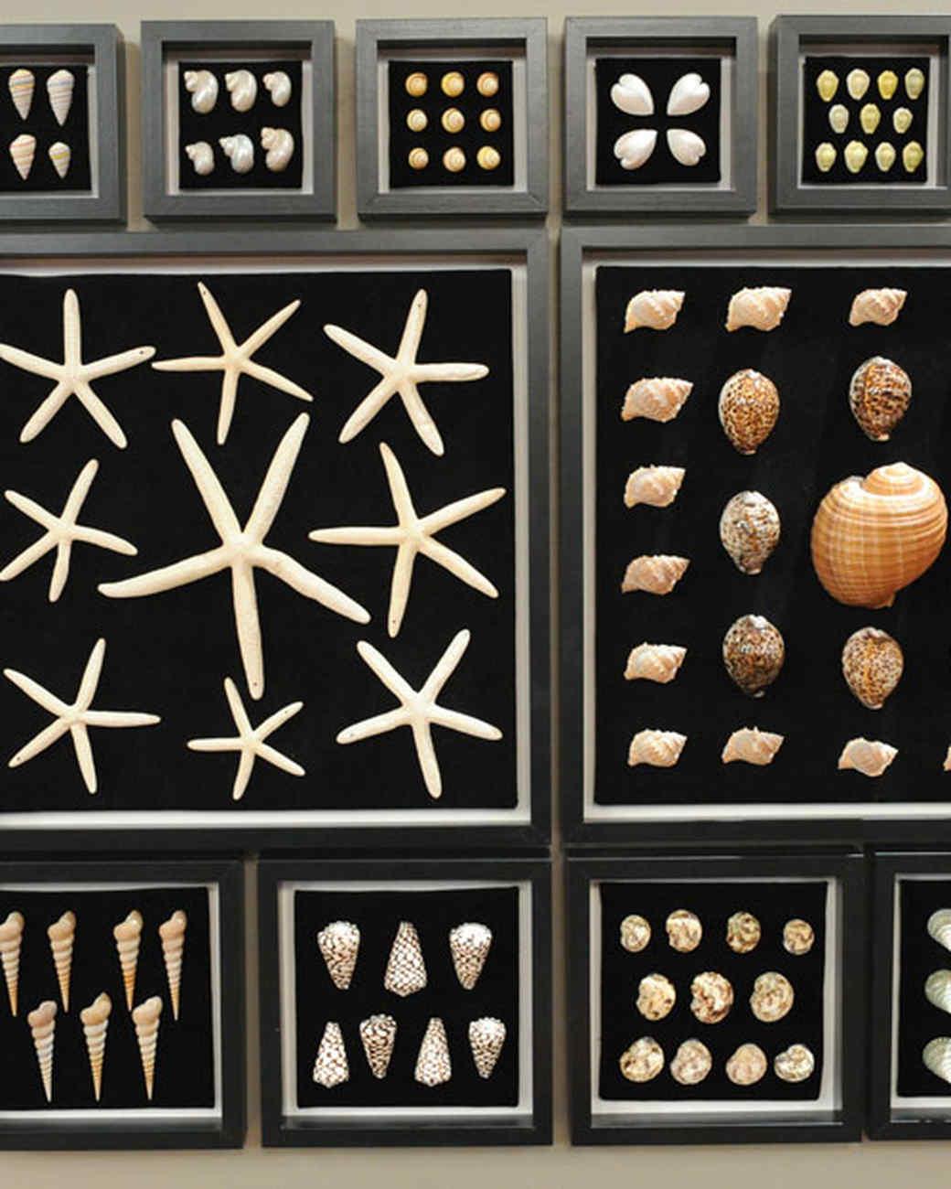 6021_100610_collection_frames.jpg