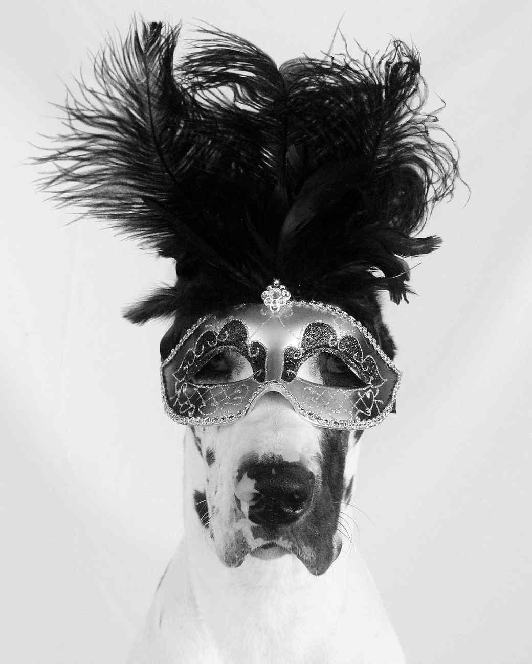 cosette-mask-avant-garde-1014.jpg