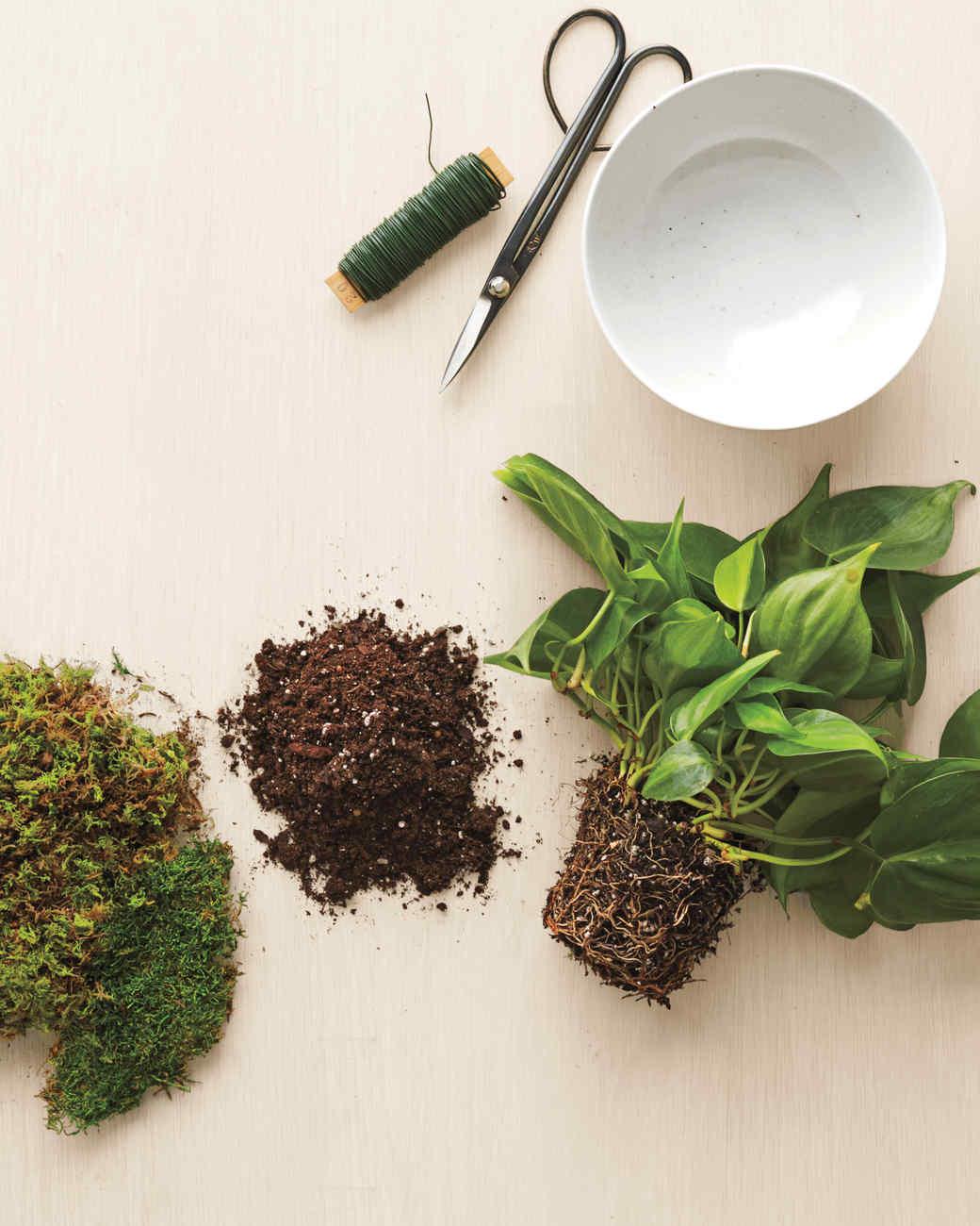 Kokedama A Japanese Gardening Technique That S Diy