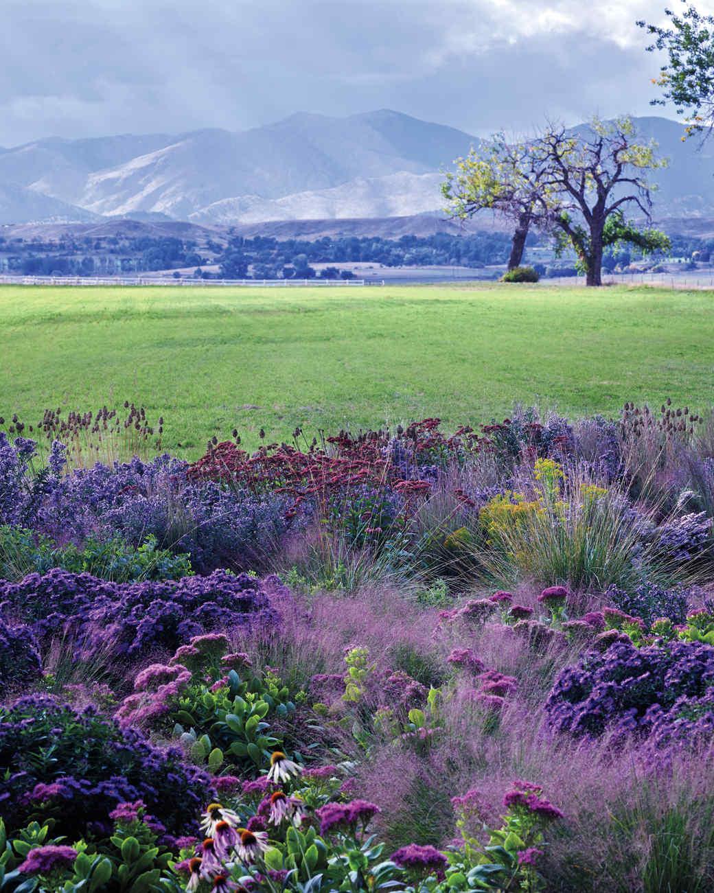 ogden-garden-001-d111601-comp.jpg