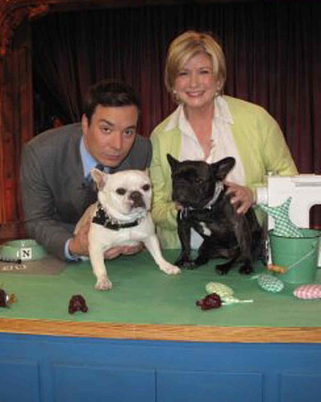 pets_best_wag_withjimmyfallon.jpg