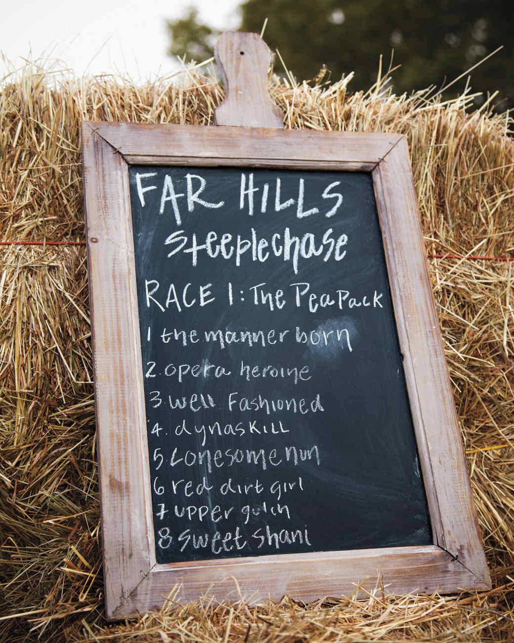steeplechase-sign01-mld108130.jpg
