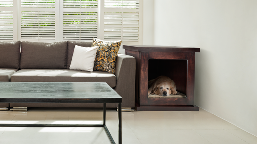 """The world's first """"smart"""" anti-anxiety dog crate."""