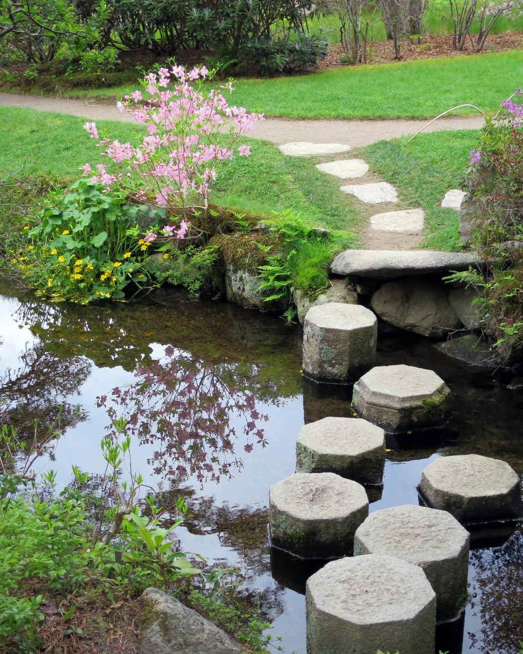 asticou-azalea-gardens-11-0615.jpg