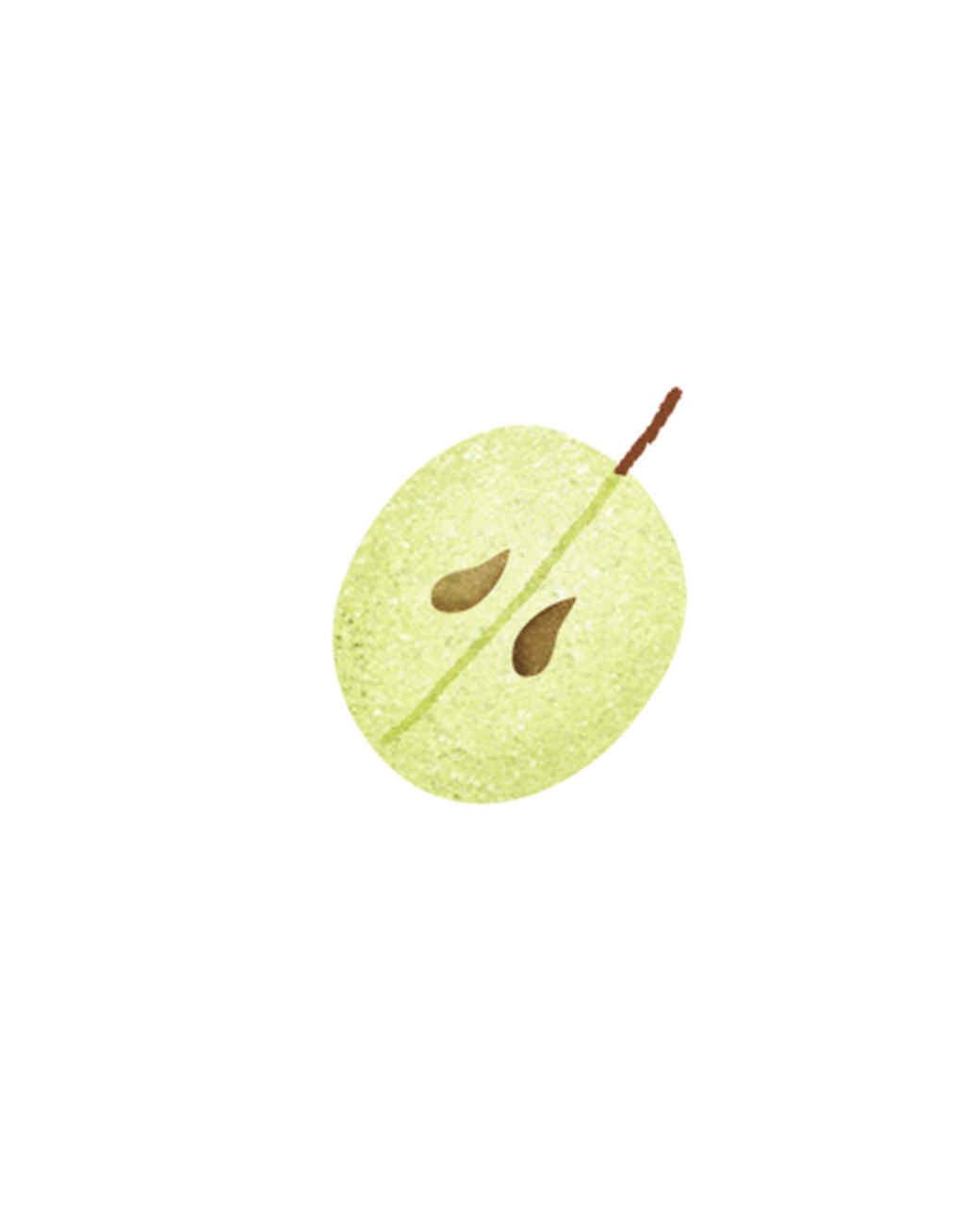 essential-oils-illustration-03.jpg