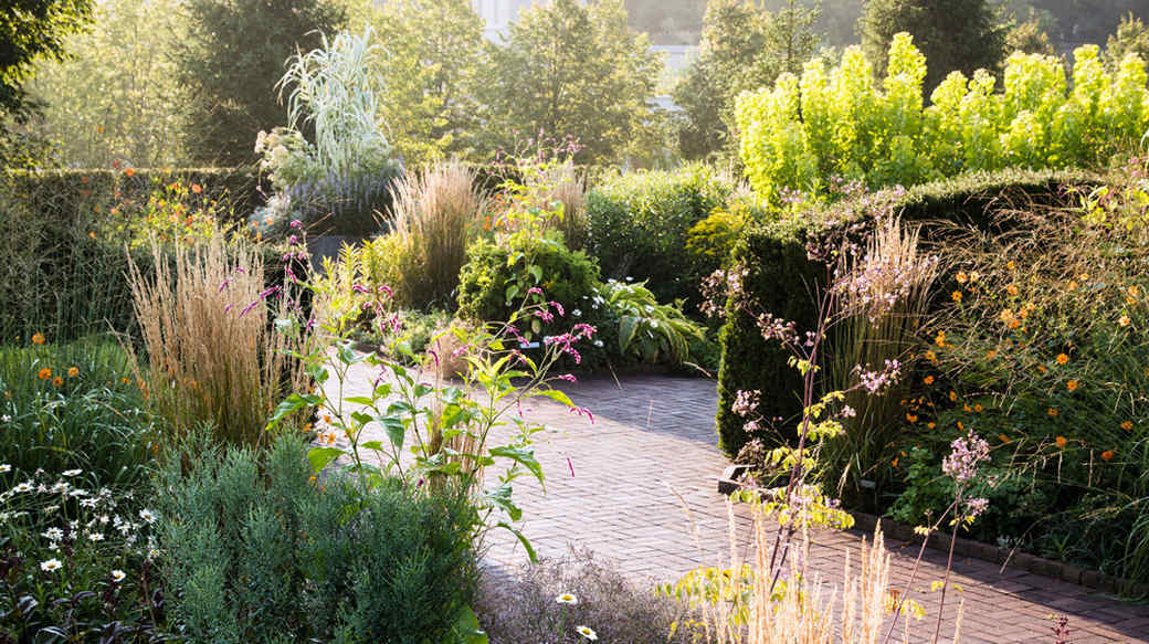 various floral and greenery plants by stone pathway