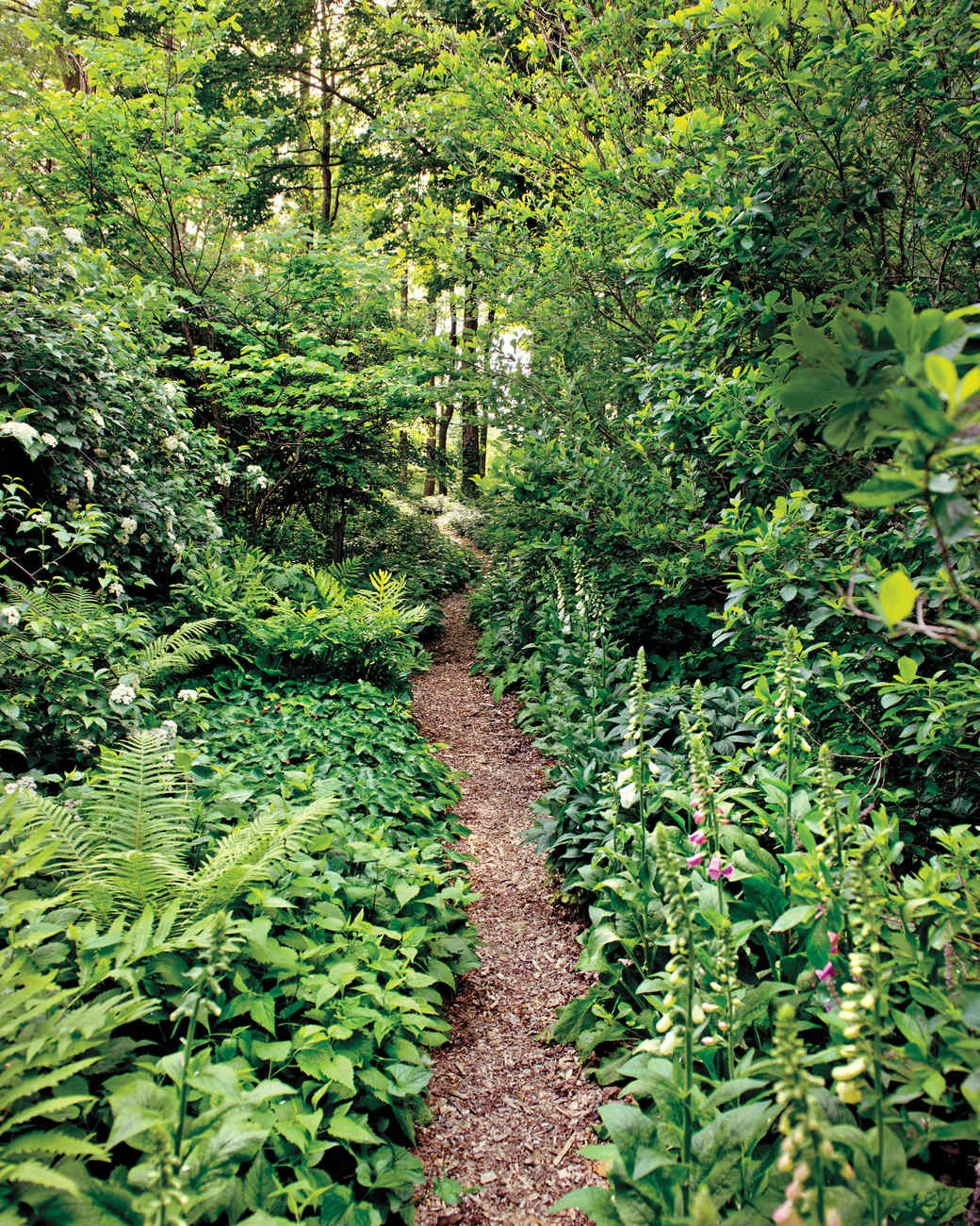 page-dickey-garden-md110307-37.jpg