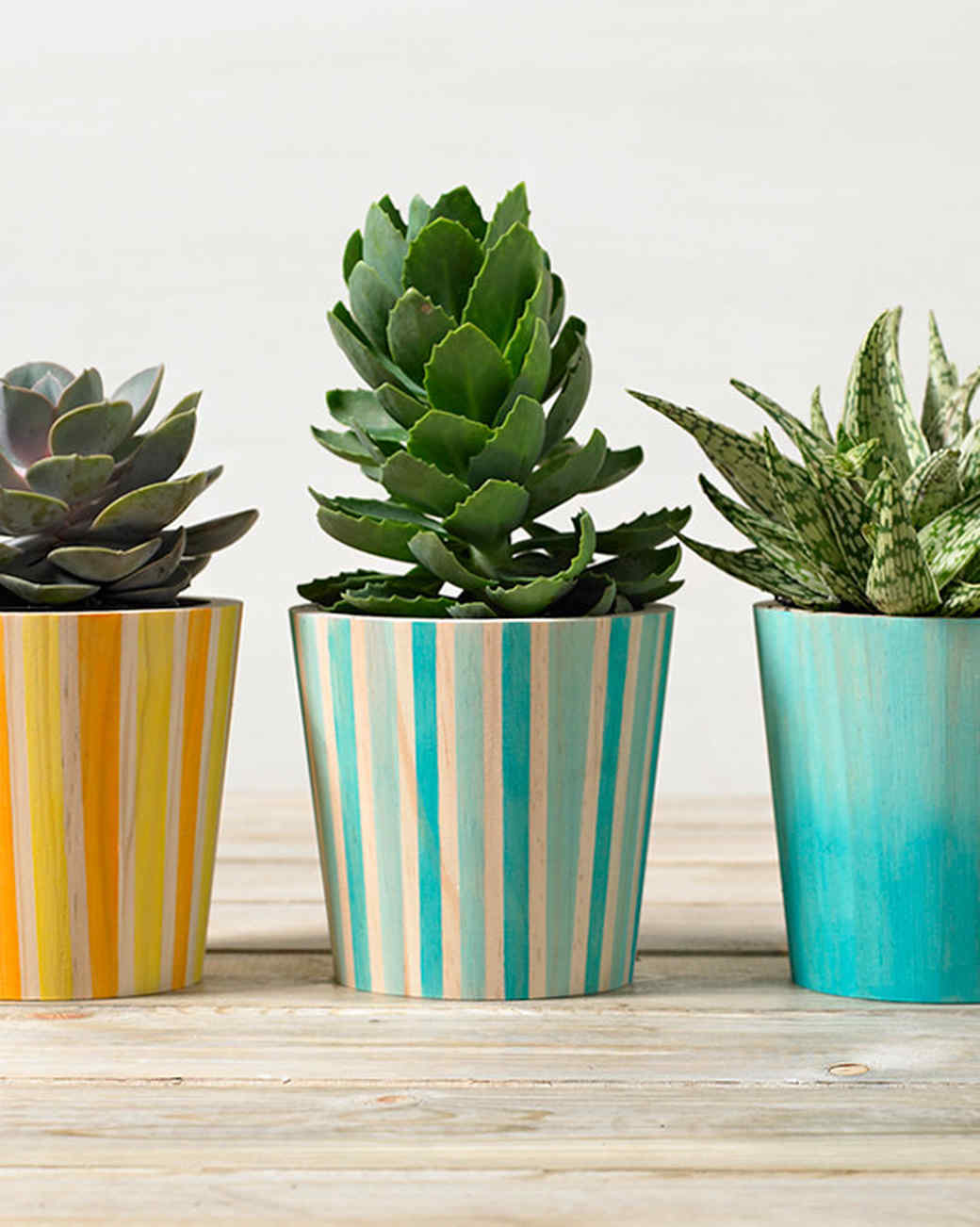 plaid watercolor planters