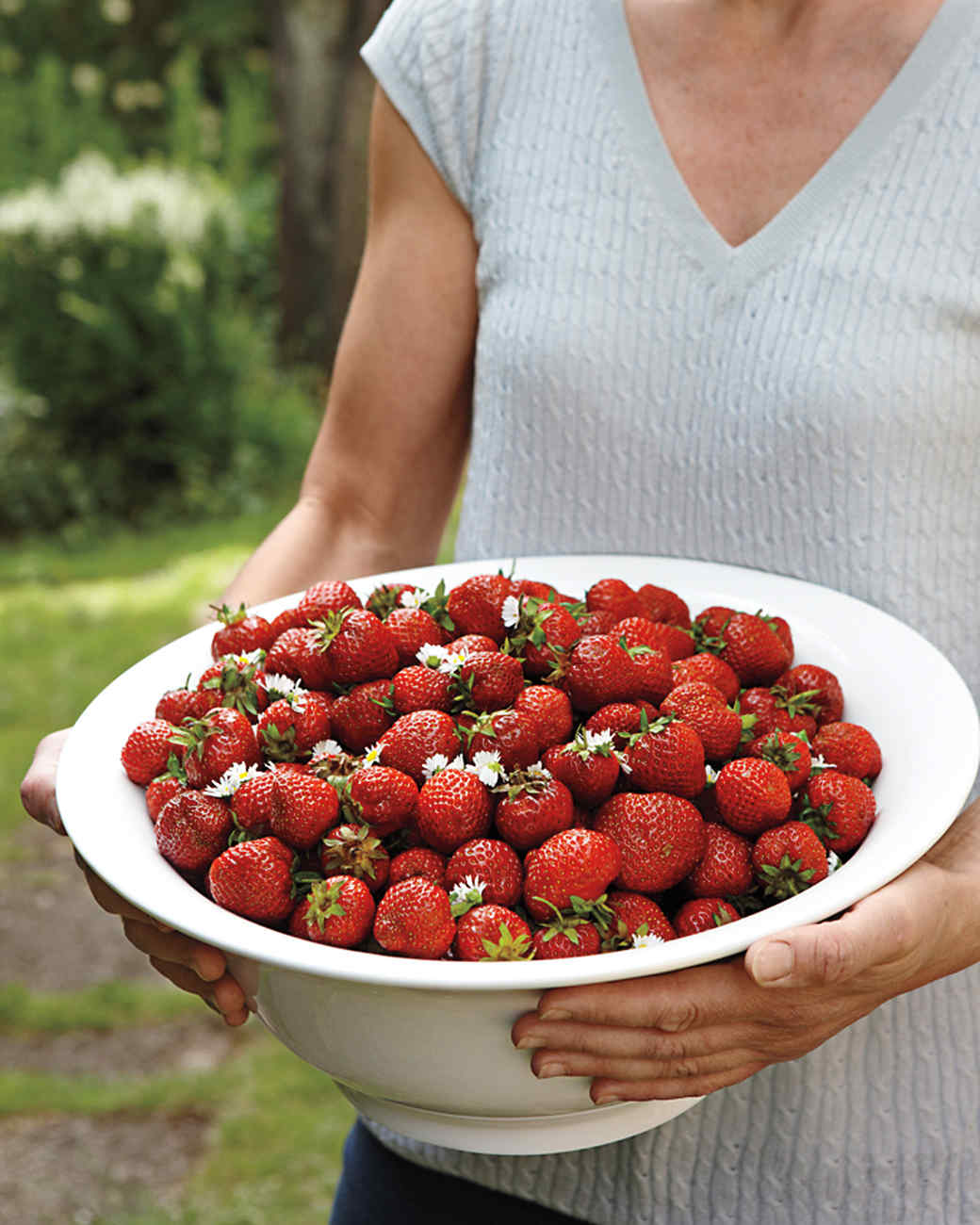 strawberries-i0c6610r-md109179.jpg