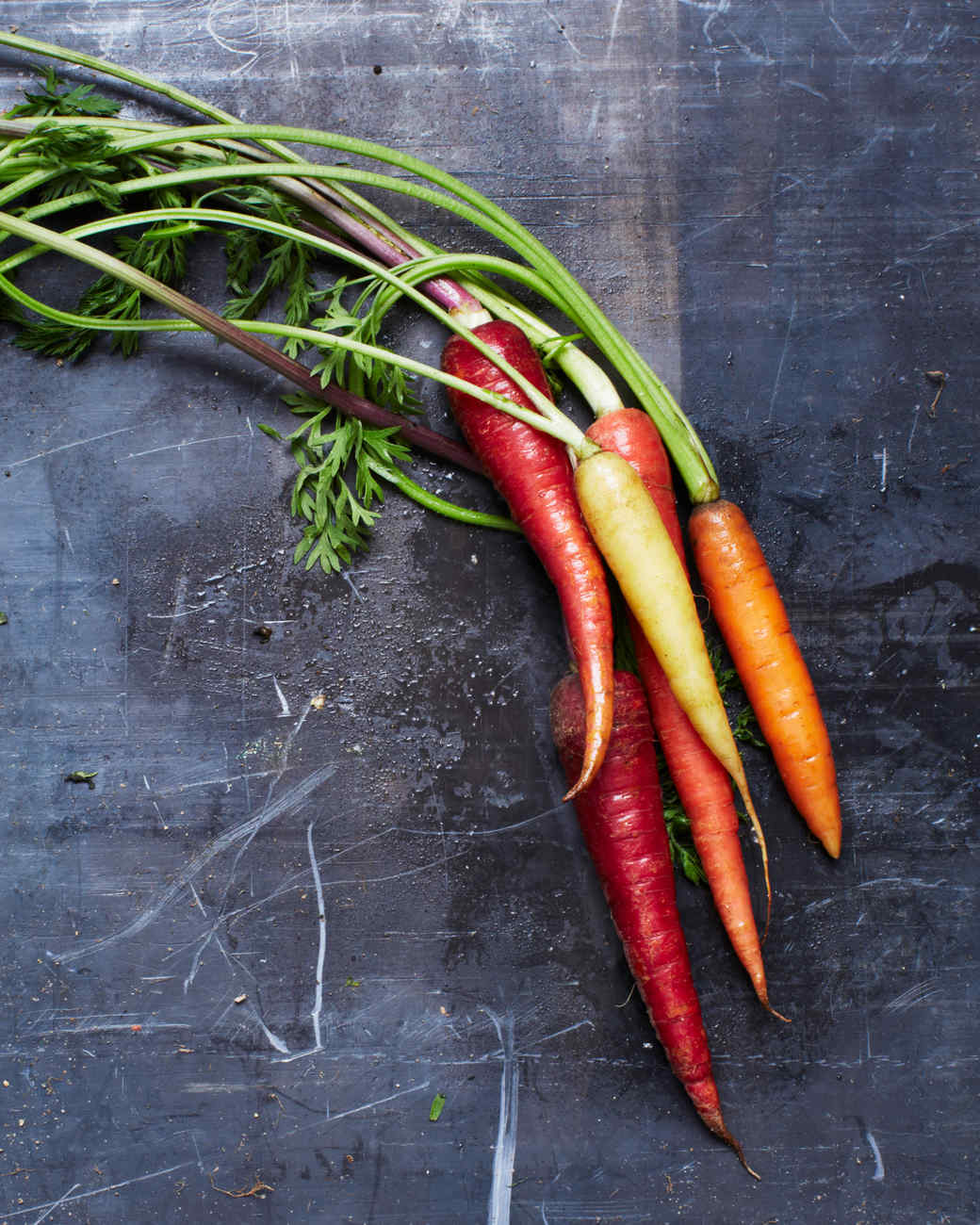 carrot-roots-tubers-206-d110486.jpg