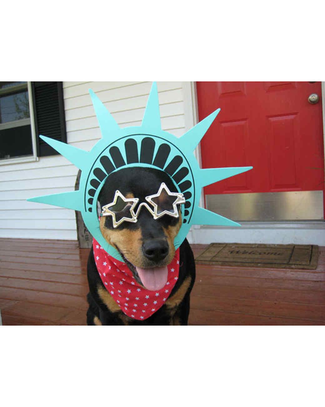 p_patriotic_10_9554648_21234631.jpg