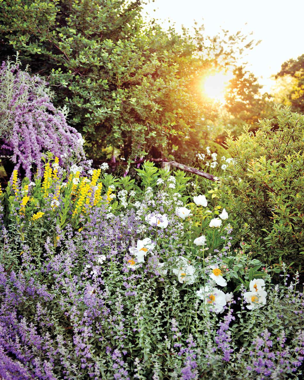 page-dickey-garden-md110307-104.jpg