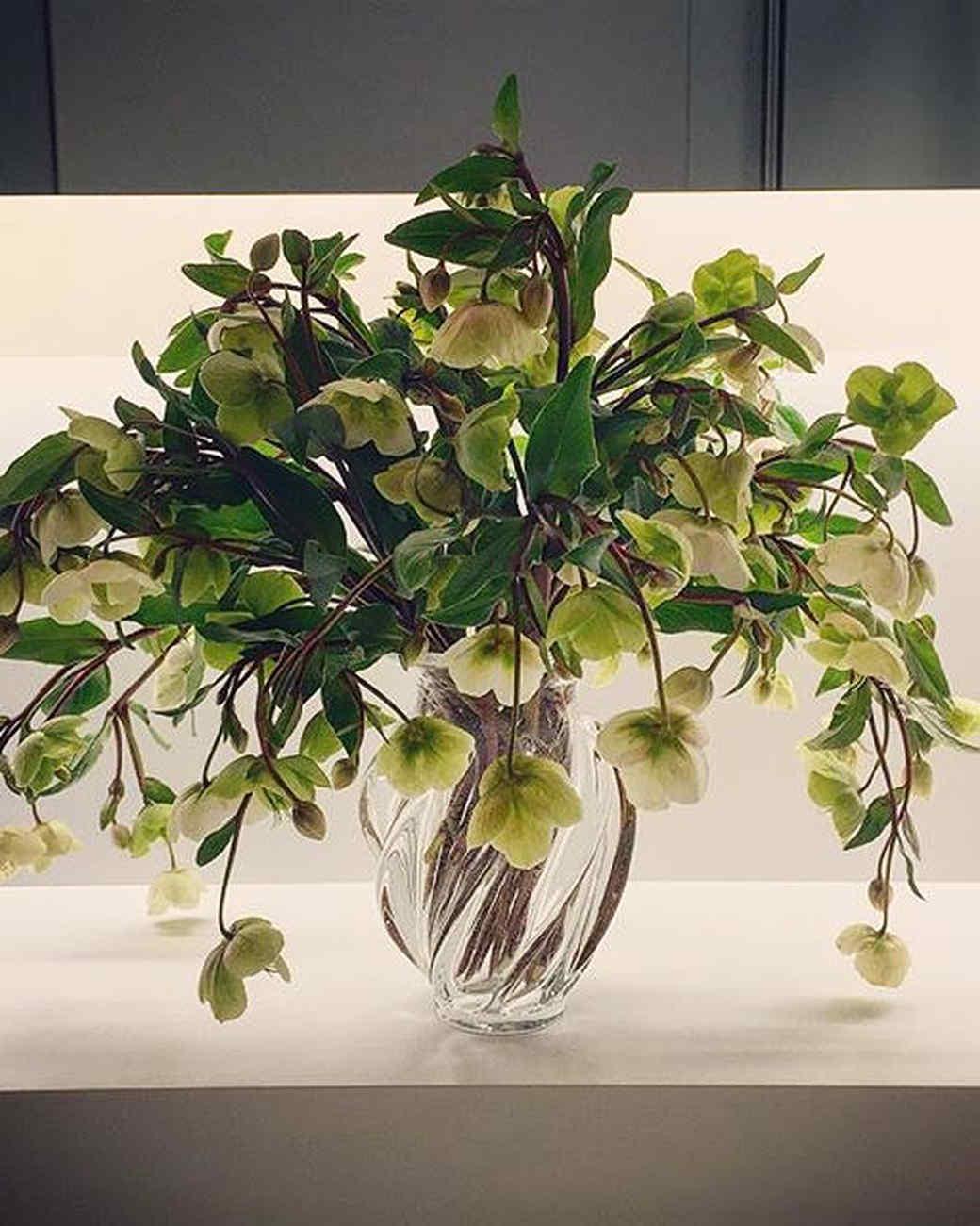 sharkey-instagram-white-flowers.jpg