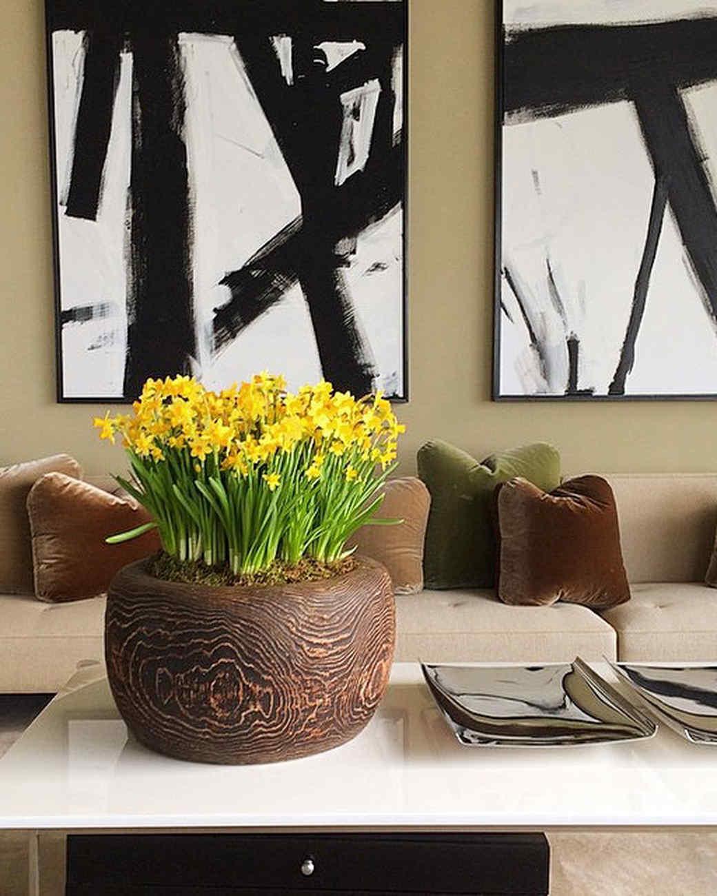 sharkey-instagram-yellow-tulips.jpg