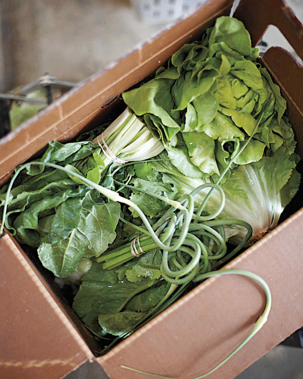 vegetable-box-0611mbd106092-109.jpg