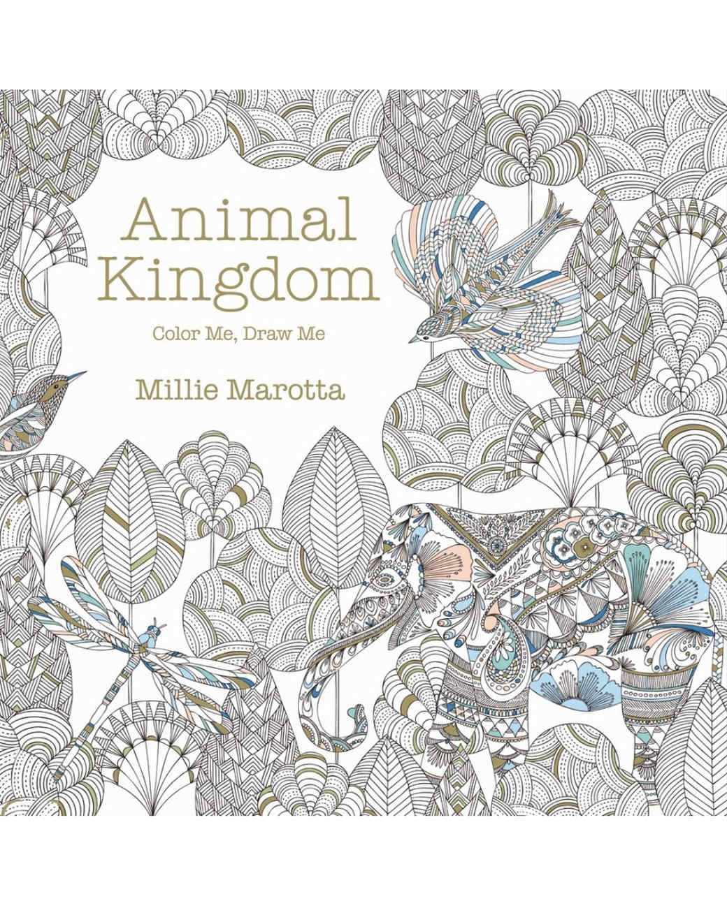 Color me draw me animal kingdom book - Introduction