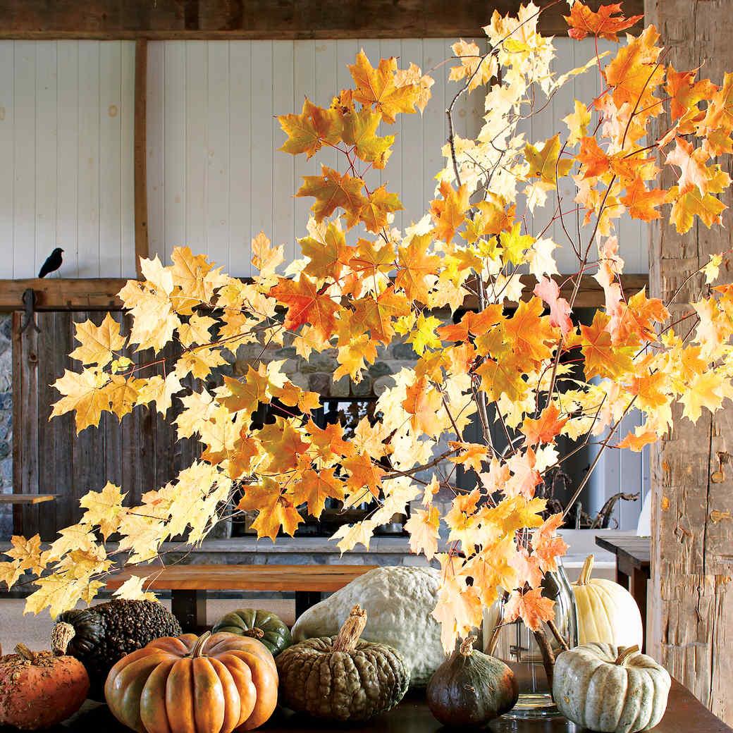 All About Autumn Martha Stewart