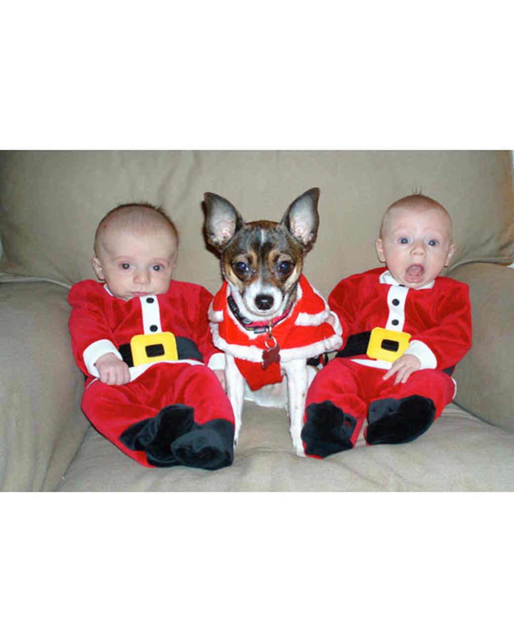 pets_ugc_santa_11653175_28251451.jpg