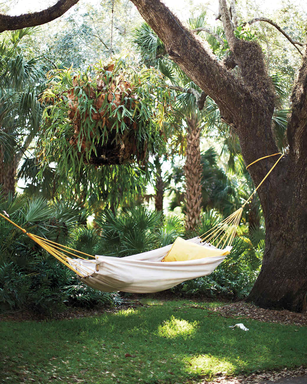suspended straps hammock suspension tree for tag belek trees hotel