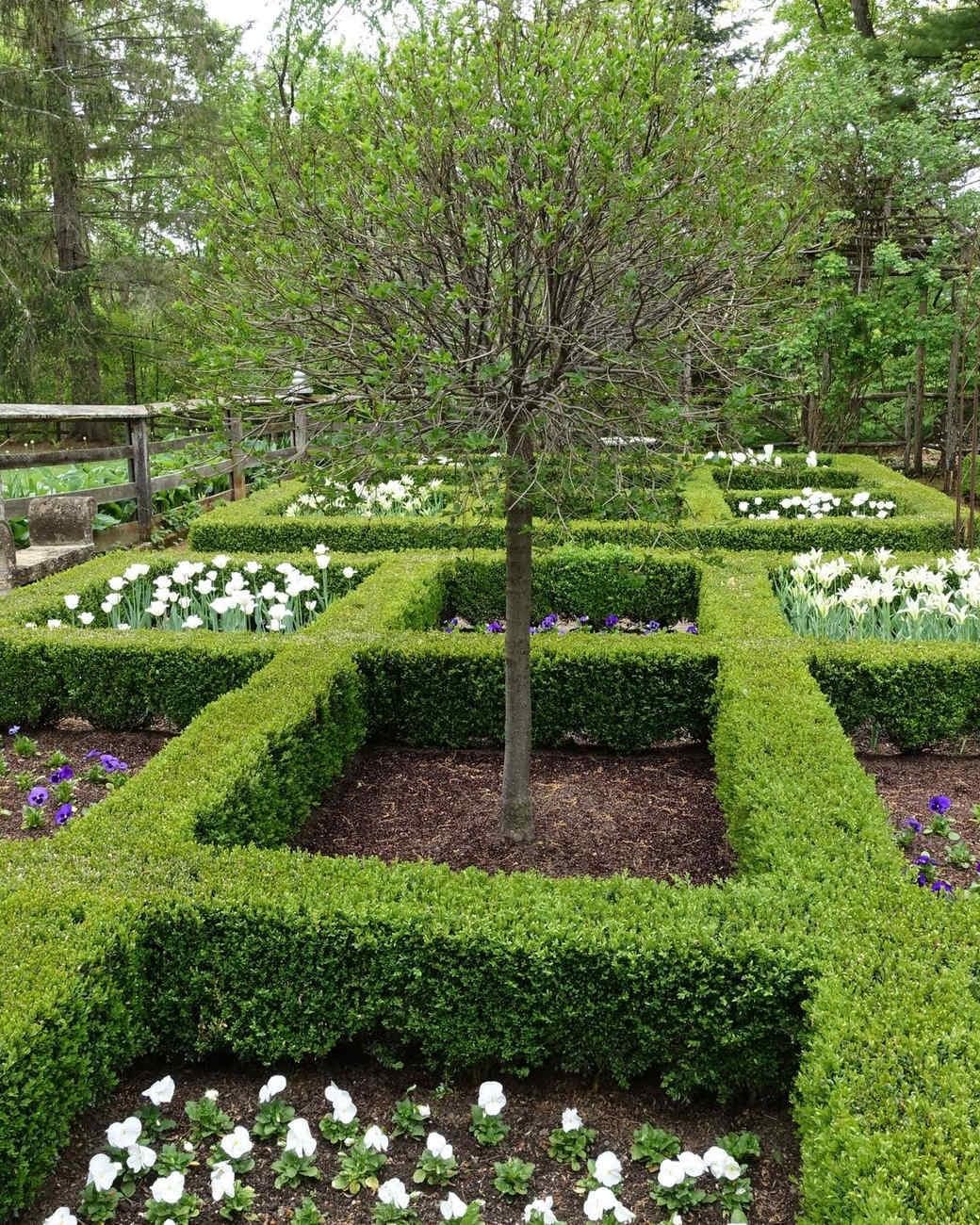 martha-bunny-garden-blog25_051515.jpg