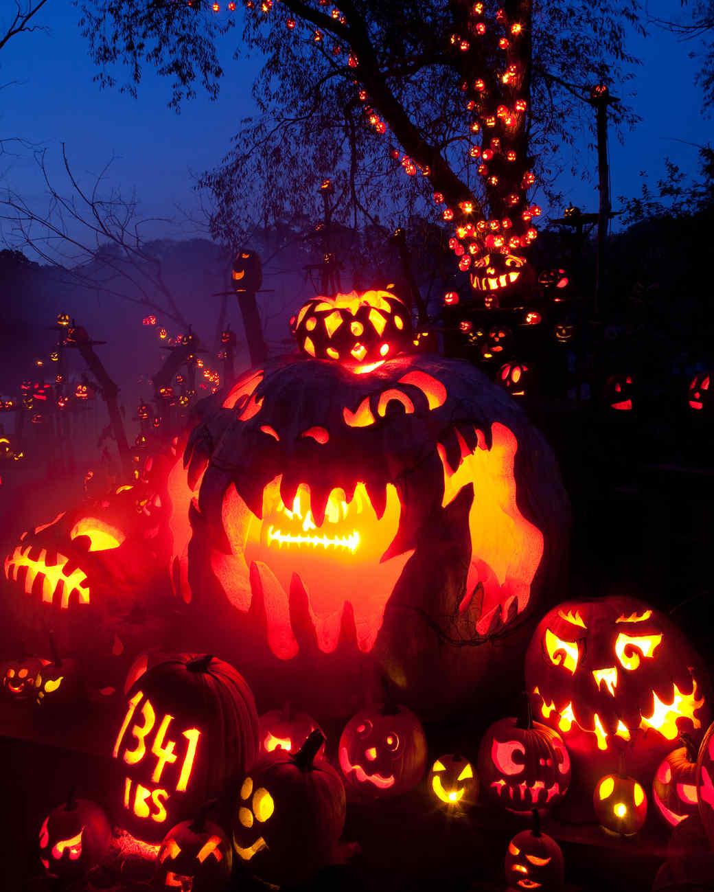 jack-o-lantern night display pumpkin festival