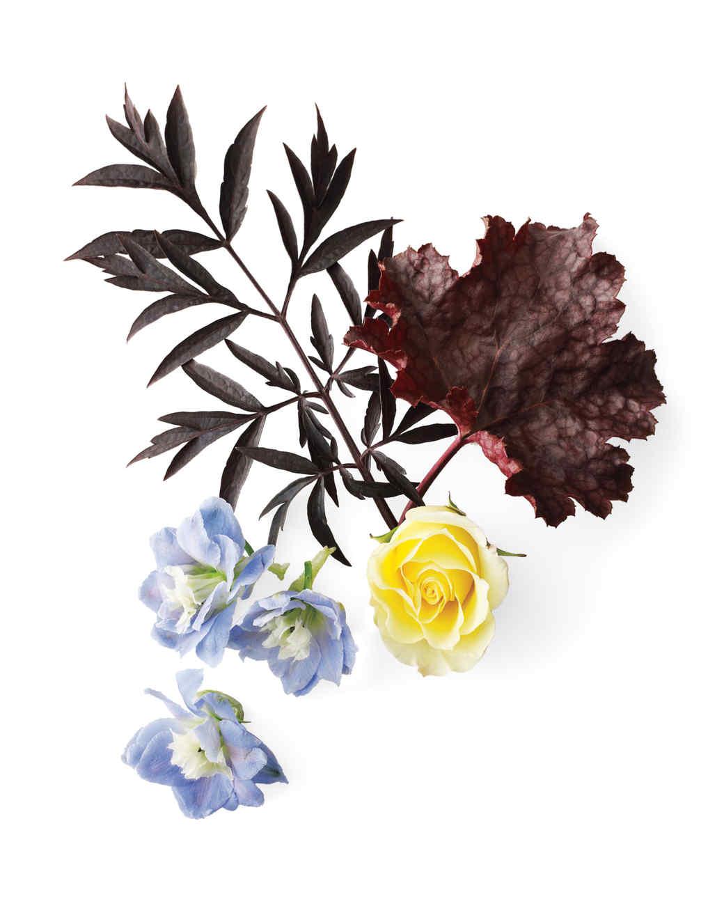 brown-yellow-blue-plants-mld108315.jpg