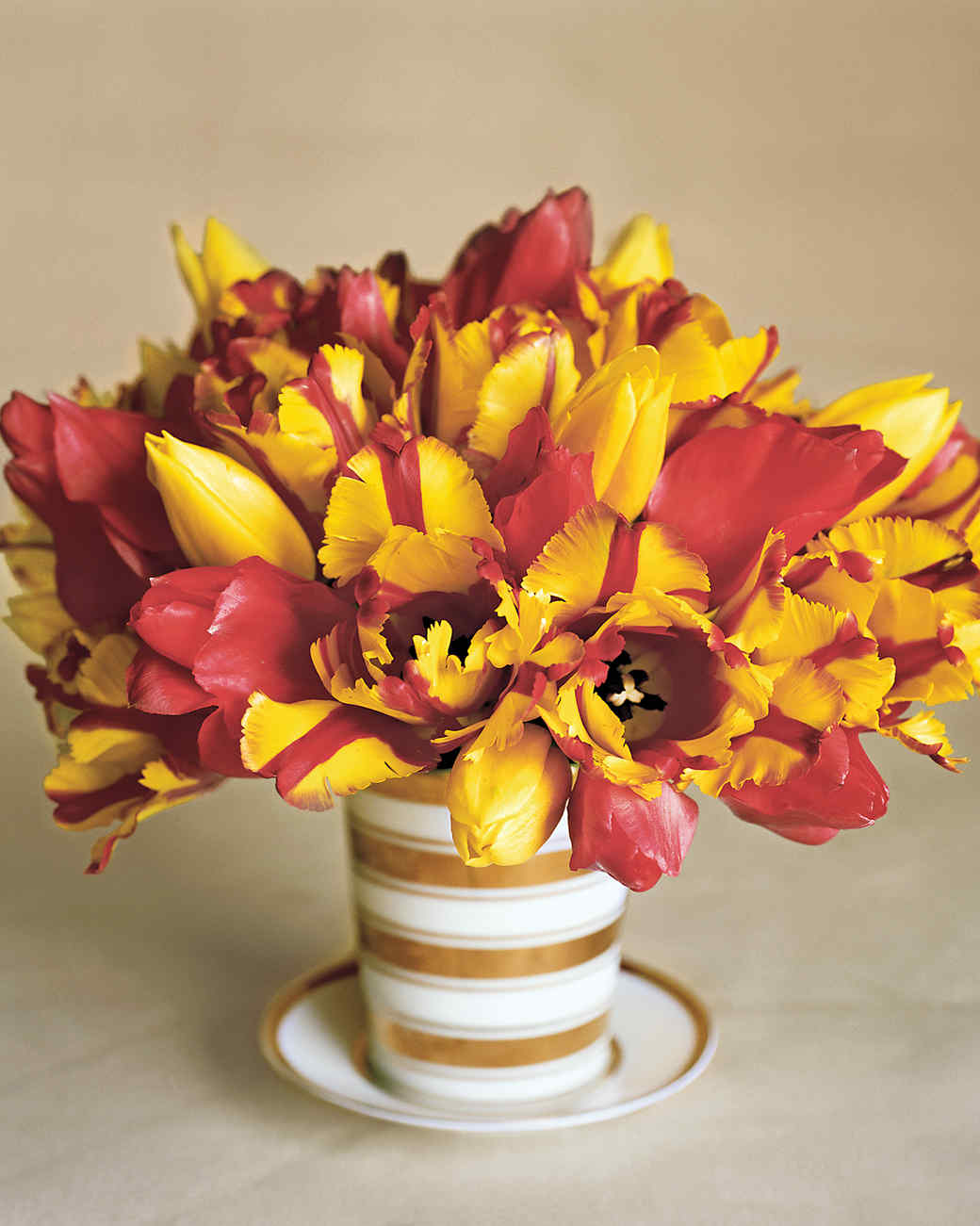 Tulip arrangements martha stewart solid and striped tulips arrangement izmirmasajfo