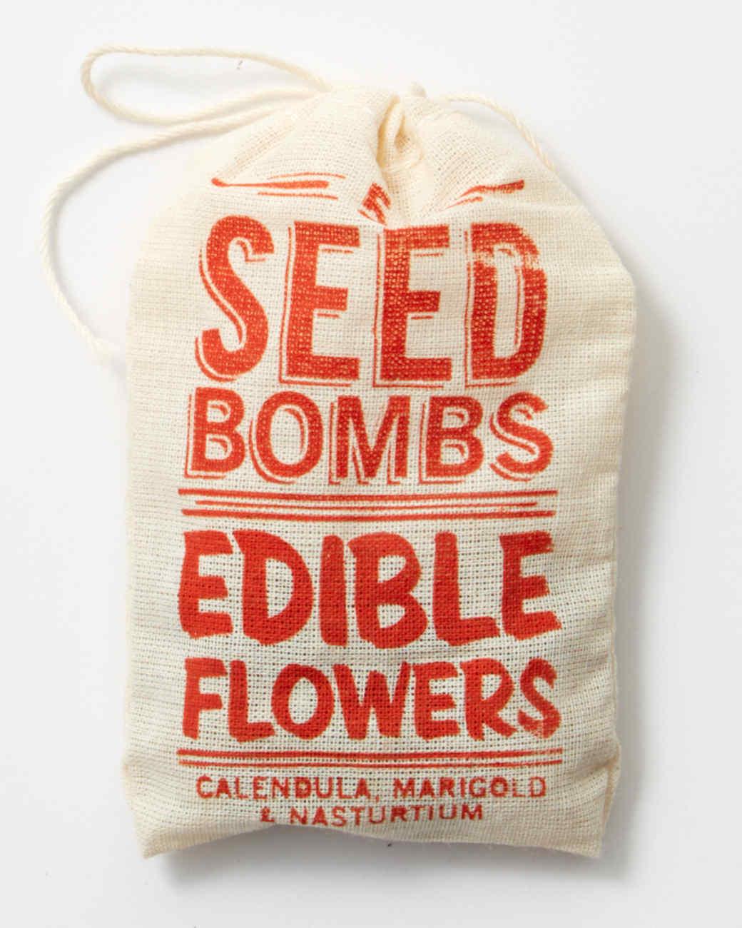 garden-seed-bomb-2981-d112789-0116.jpg