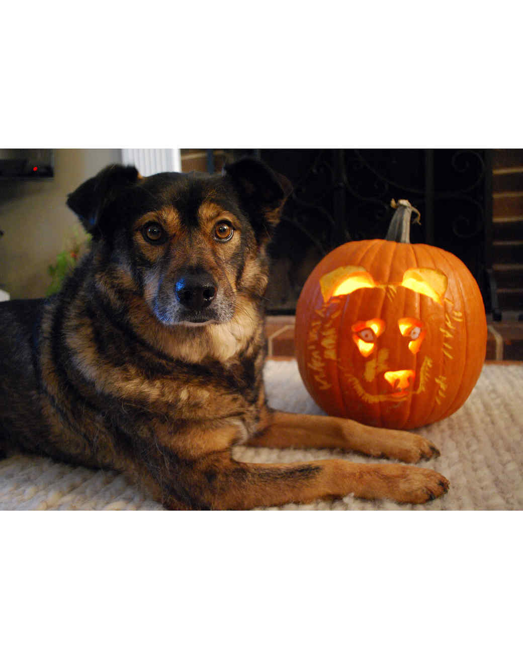 ugc-halloween-1011-leesea-14942520.jpg