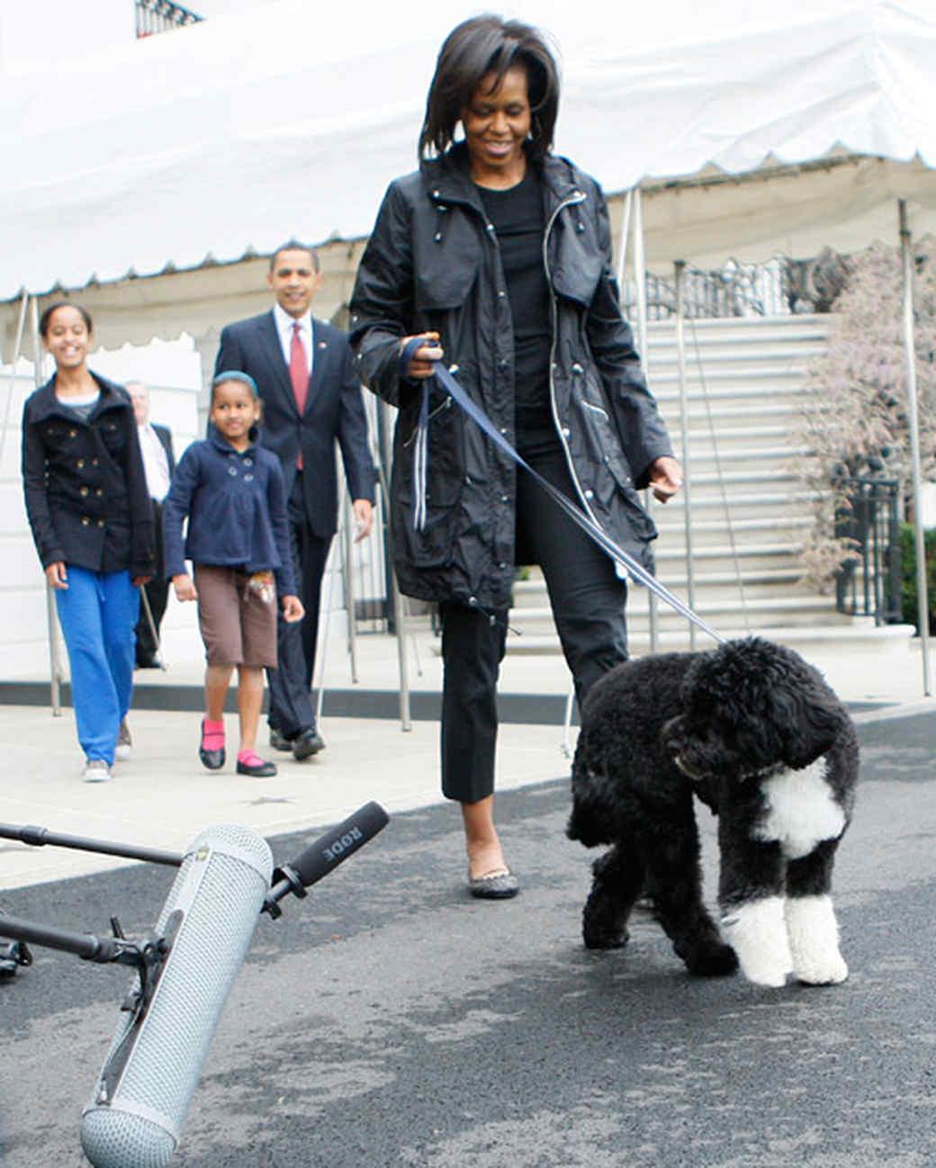 pets_ap_first_pet_michelle_obama_bo.jpg