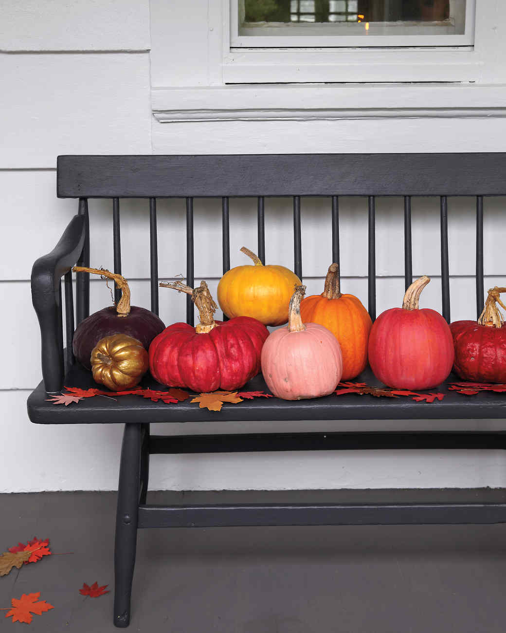 painted-pumpkins-leaves-006-md110410.jpg