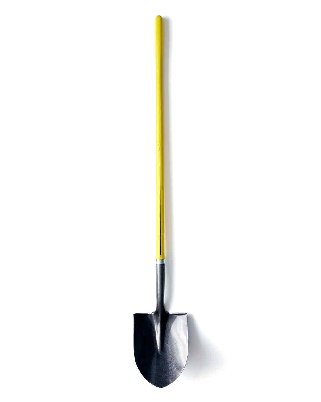 snow-shovel-sandra-lee-ld110707-1215.jpg