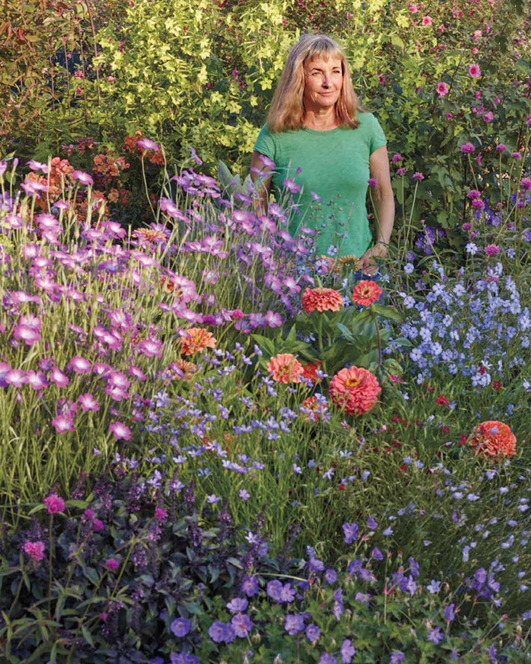 annies-annuals-garden-1507-105-d112384.jpg