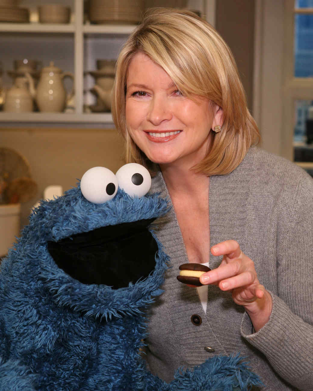 cookie-monster-martha-stewart-img-5549.jpg