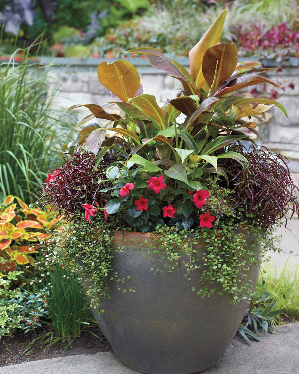 tangletown-gardens-minnesota-083-d111526.jpg