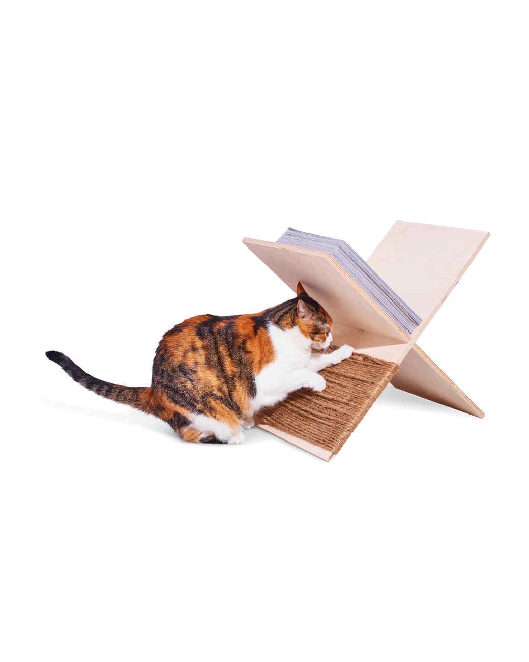 cat scratcher magazine rack