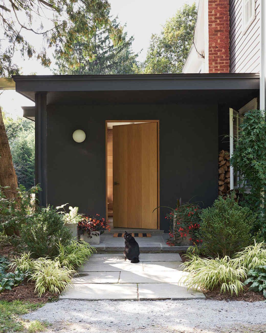 cat sitting outside back door black walls