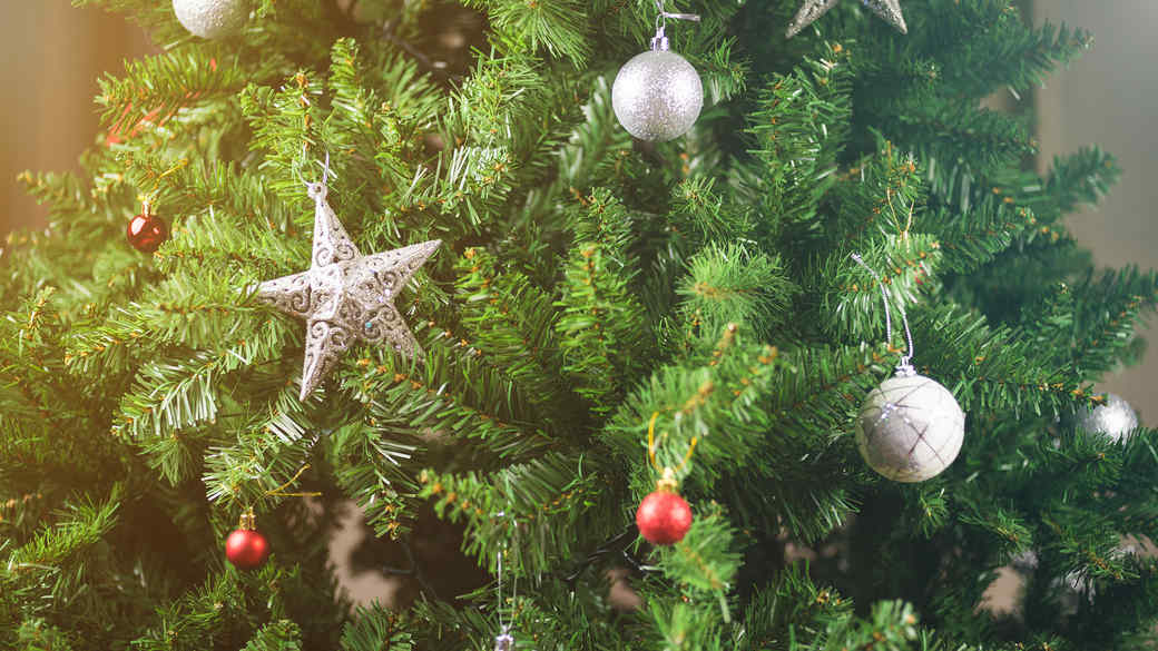 christmas tree with star ornament