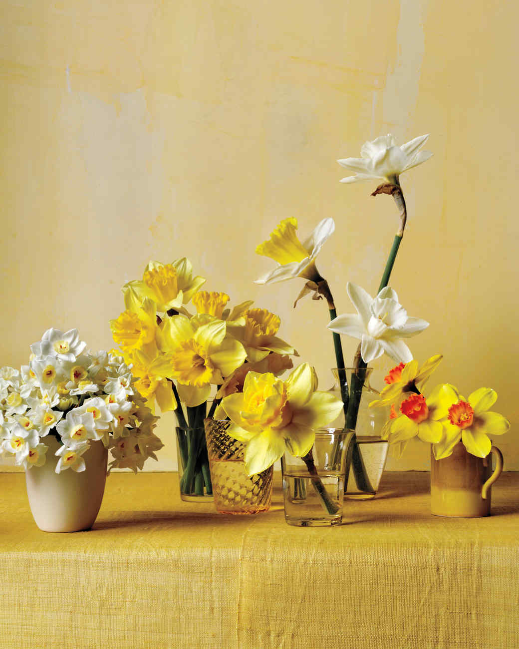 daffodil-flower-arrangement-v3-n-comp-d111001.jpg