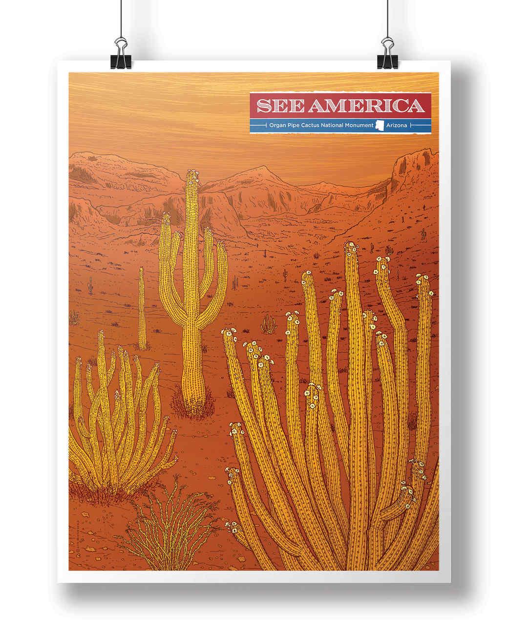 see-america_organ-pipe-cactus_c-adam-s.-doyle.jpg