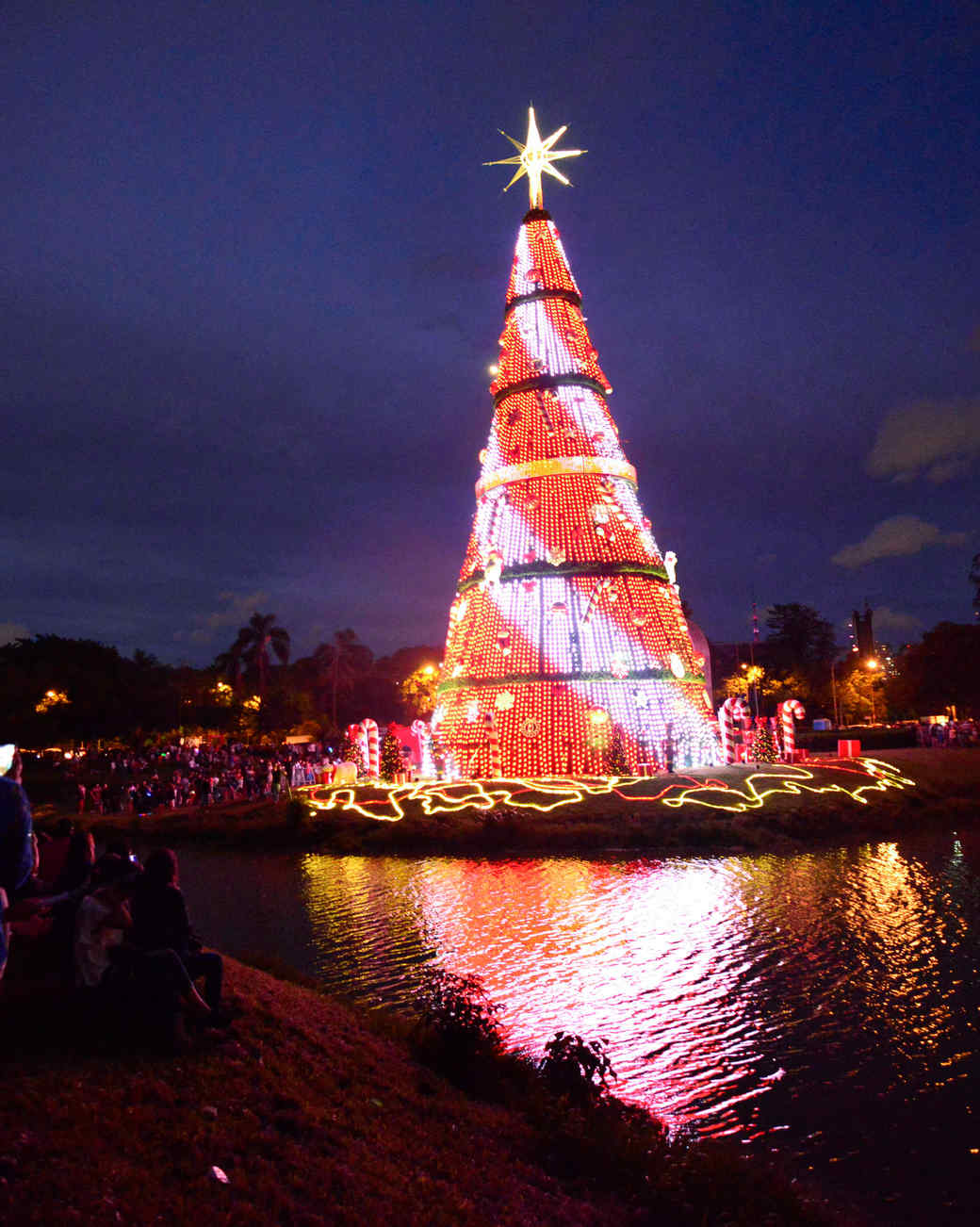 Ibirapuera Park Christmas Tree 2018