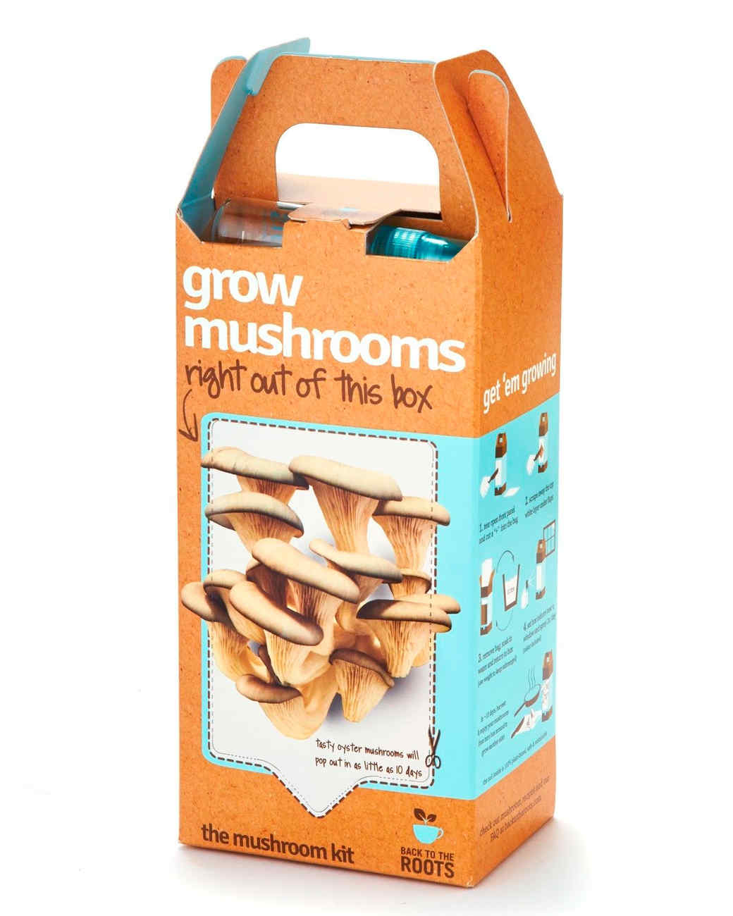 back-to-the-roots-grow-at-home-mushroom-kit-0614.jpg