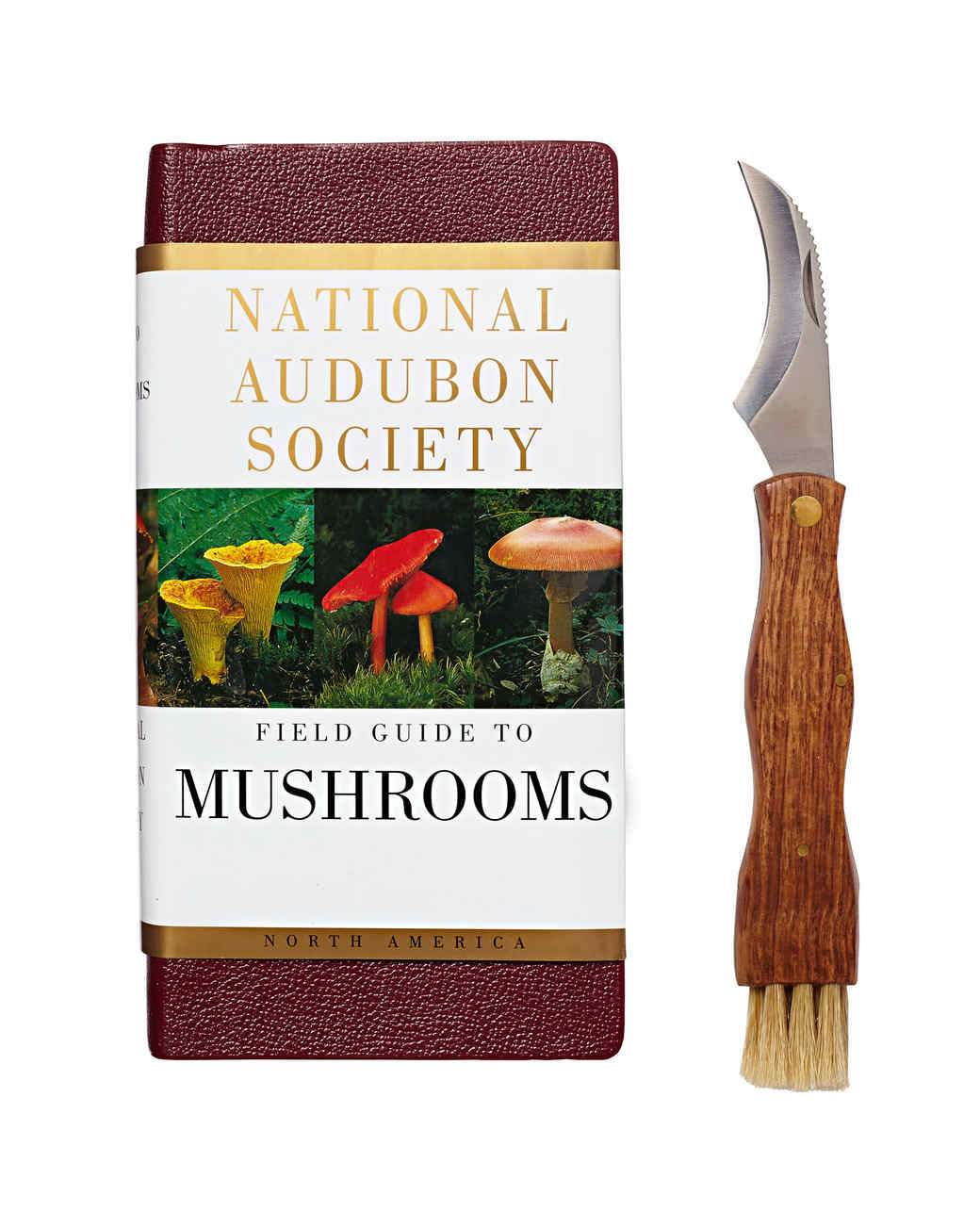 national audubon society mushroom guide