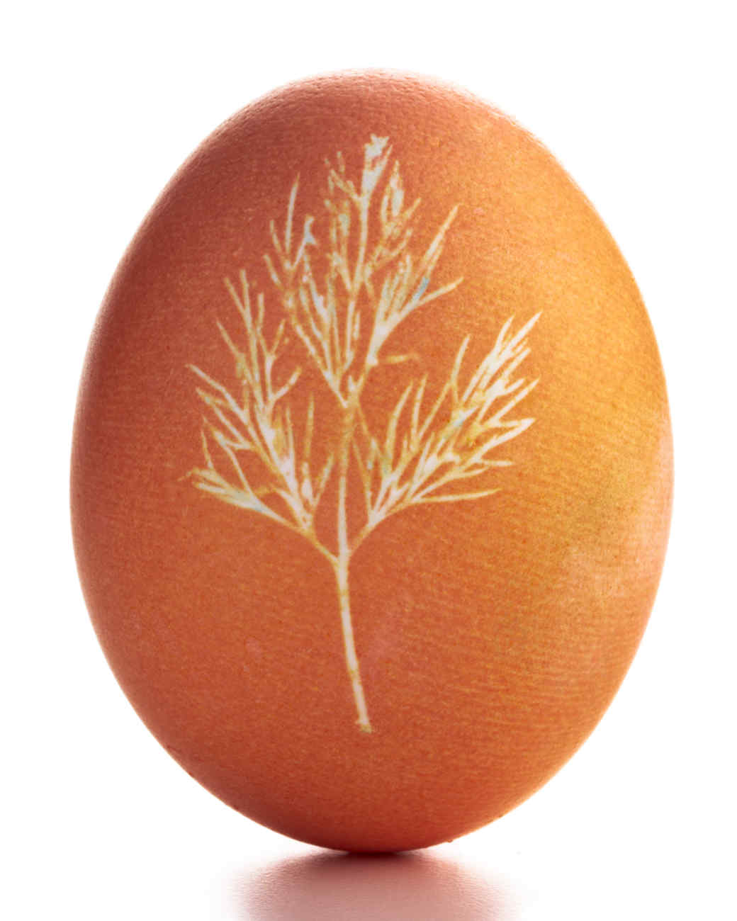 egg-dyeing-app-d107182-masking-orange-botanical0414.jpg